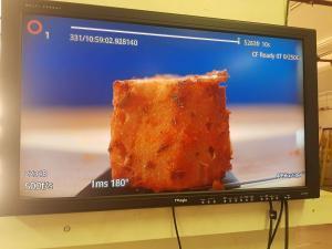 allplants tv advert filming